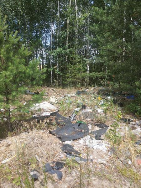 Свалка в Якимовой Слободе, мусор, лес