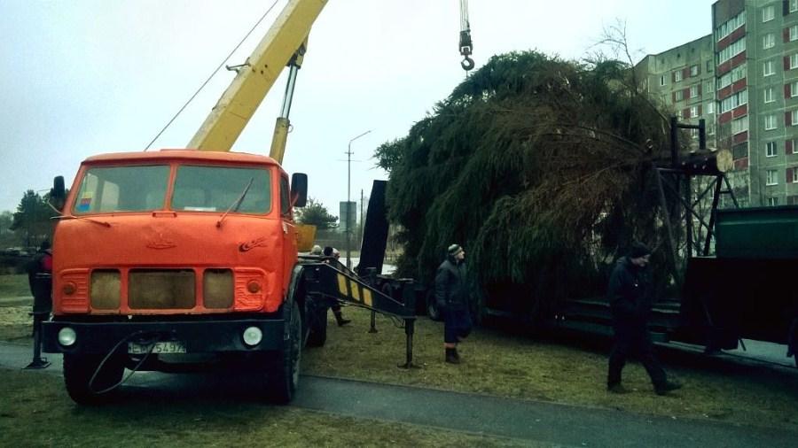 Установка новогодней елки в мкрн Полесье