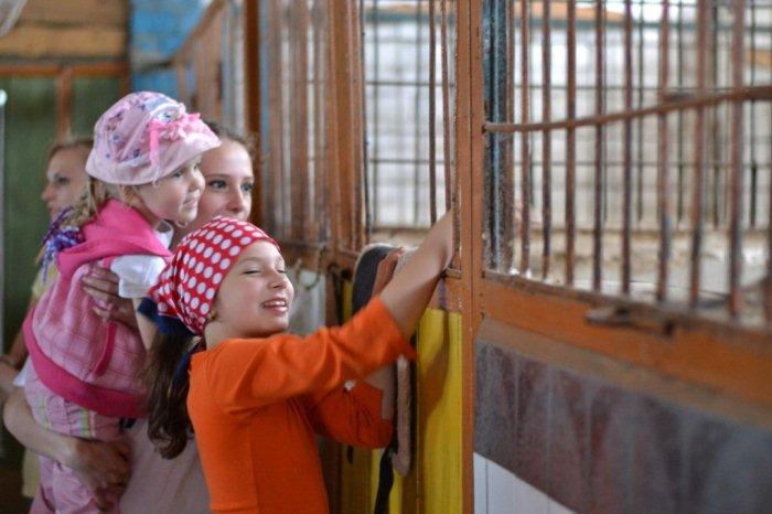 Дети в конном клубе в Печищах 4