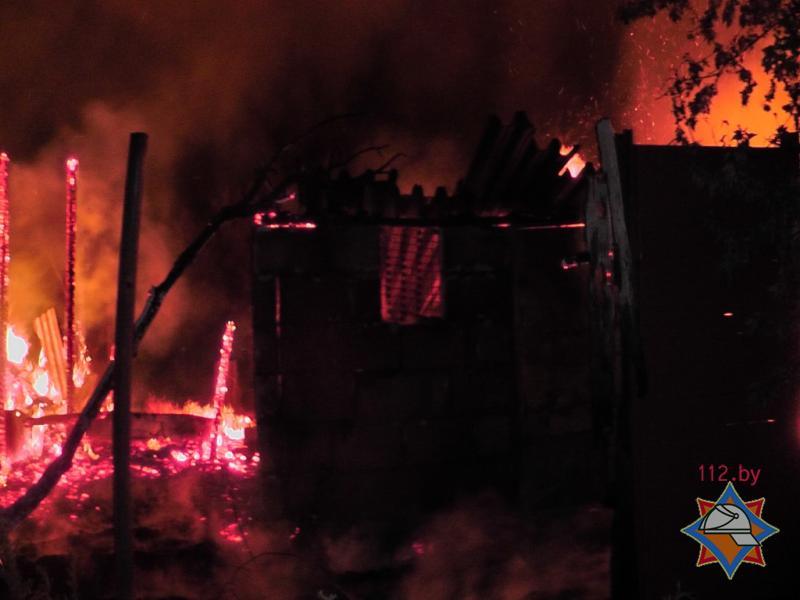Пожар в сосновом бору 30.07.2015 2