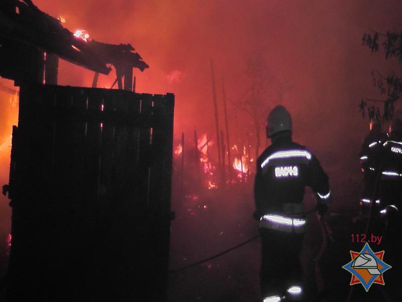 Пожар в сосновом бору 30.07.2015 3