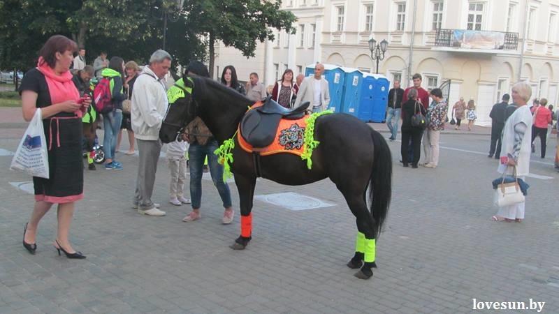 славянский базар в витебске 2015 (17)