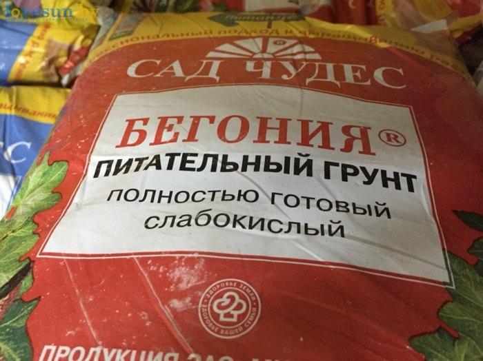 Бегония питательный грунт Магазин цветов и сувениров в Берёзках