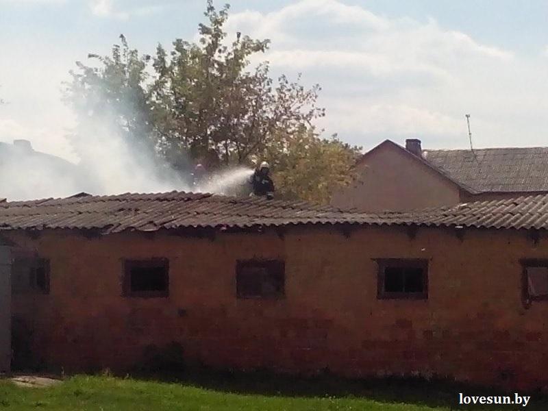 пожар в Сосновом Бору (3)