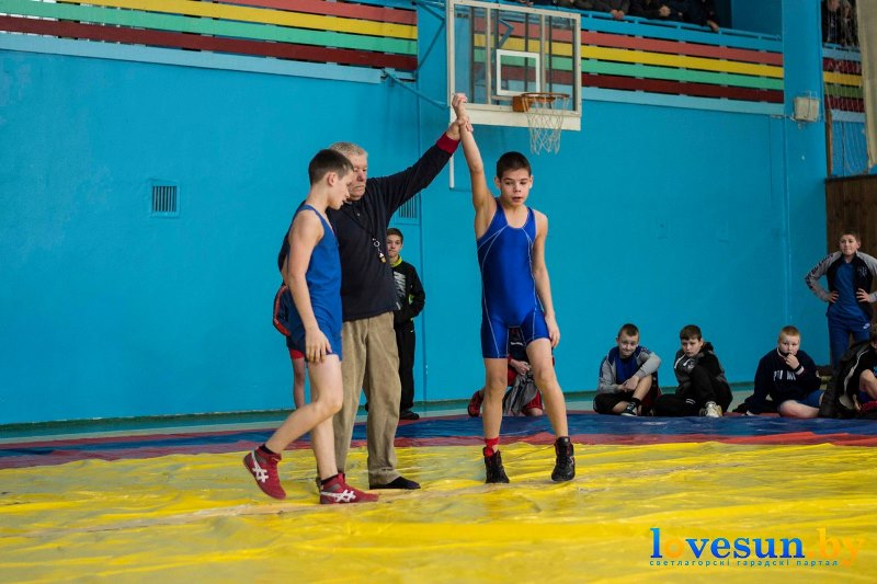 спорт борьба бассейн (3)