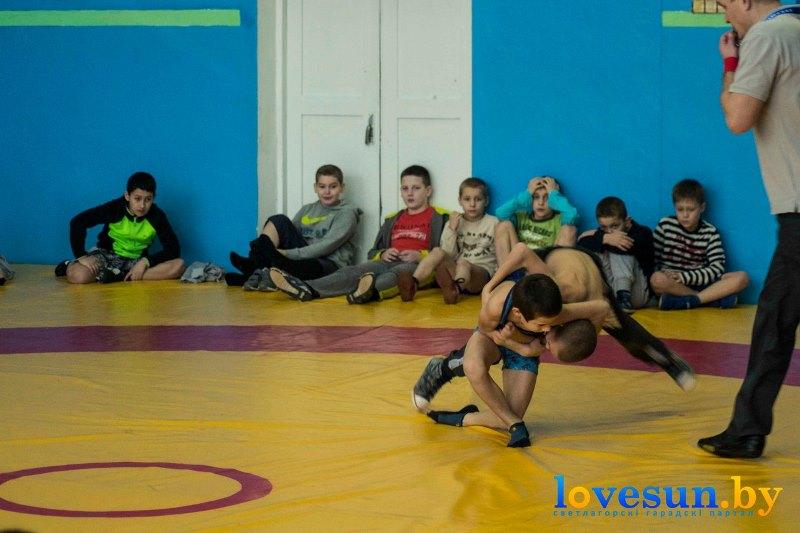 спорт борьба бассейн (5)