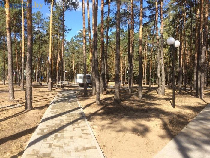 preobrazhenie-parka-16-09-16-dorozhki-derevya