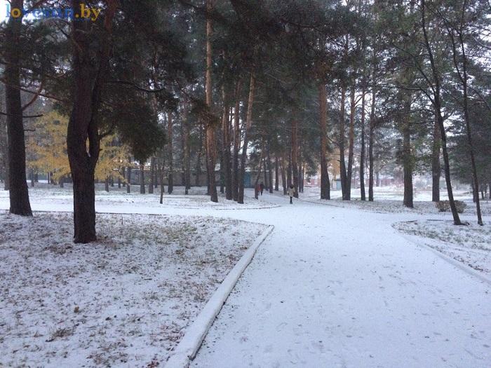 pervyiy-sneg-2016-2017-derevya-bolnichnyiy-gorodok