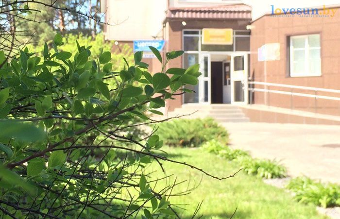 торговый центр Пассаж роодпжп товары магазин кусты листья