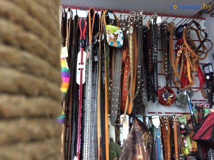 торговый центр Пассаж роодпжп товары магазин ошейники для животных собак