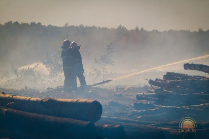 Пожар горит лес деревья 02.08.2017 сапсатели лафет