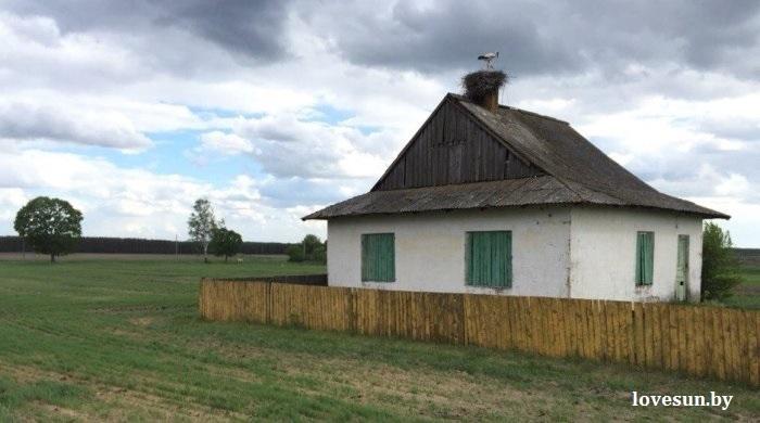 Деревня Притыка, аист 2