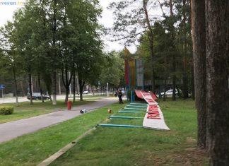 Стенд Квитней родная Беларусь перестал существовать