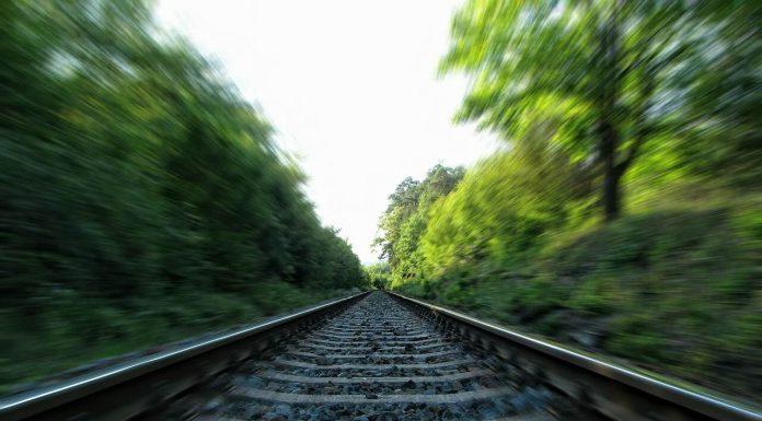 железная дорога рельсы и лес поезд