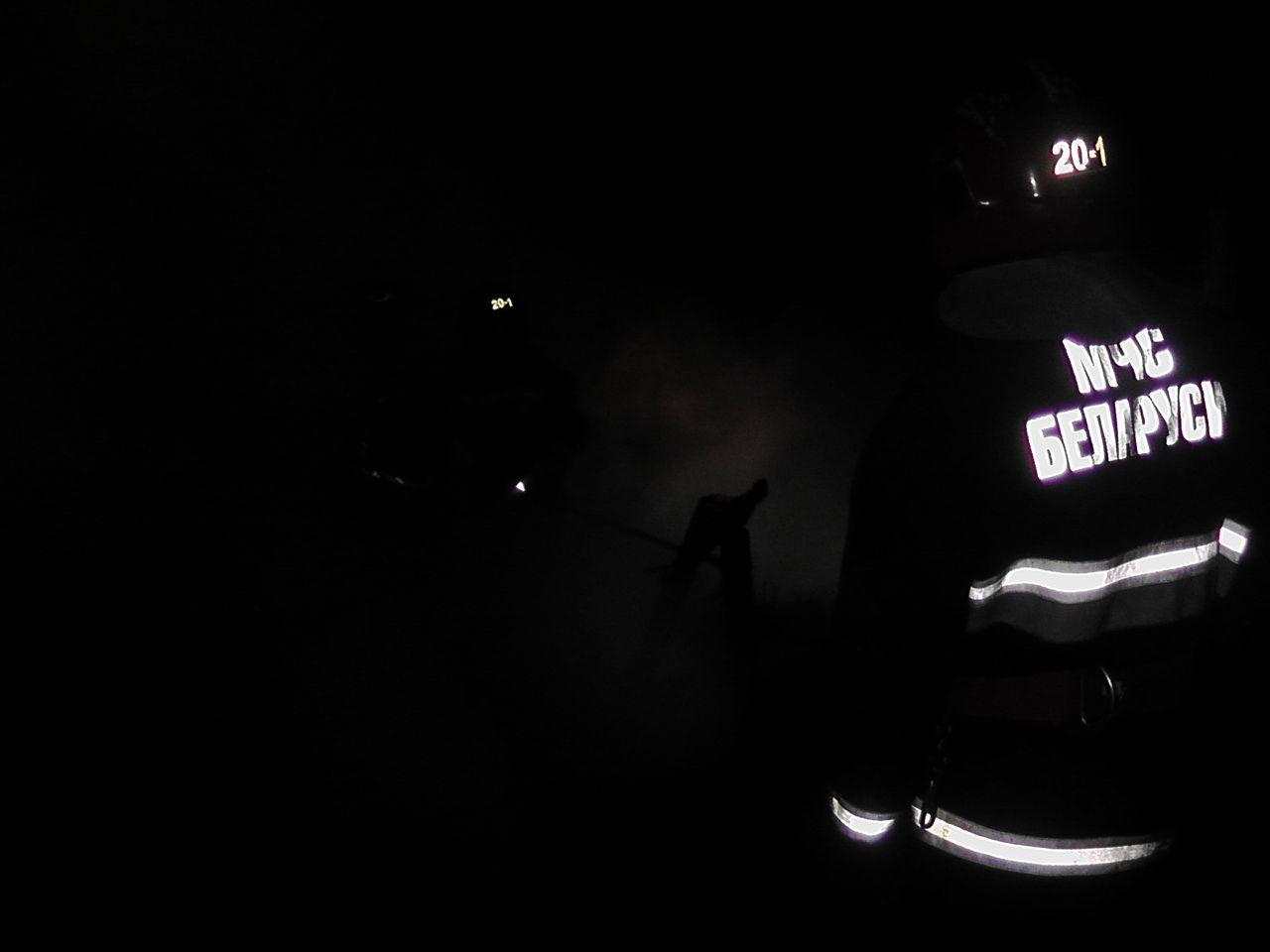 Пожар в деревне Секеричи МЧС надпись