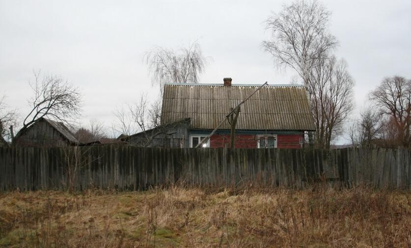 Дом в деревне Александровка Речицкого района и колодец аист