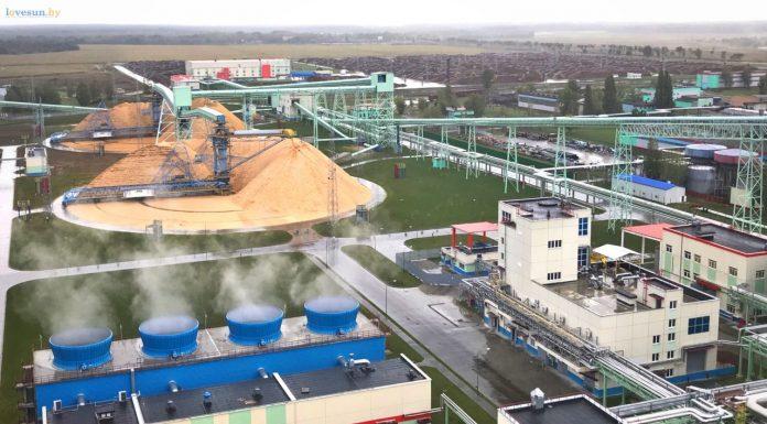 завод по производству беленой целлюлозы_result