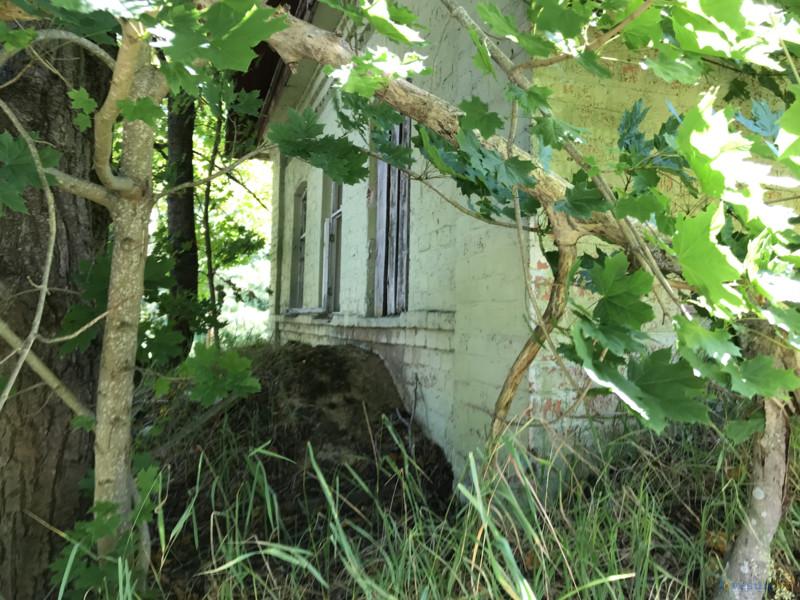 заброшенный дом в белорусской зоне отселения