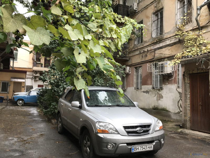 Маленький дворик в Одессе